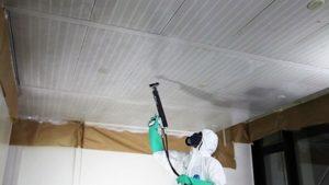 plafond métal repeindre